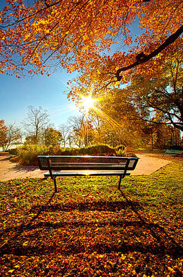Thought Of You Poster by Phil Koch