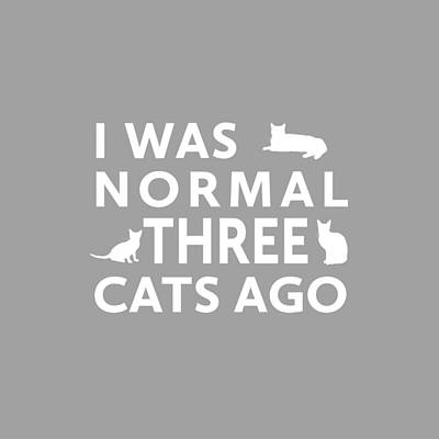 Three Cats Ago Poster by Nancy Ingersoll