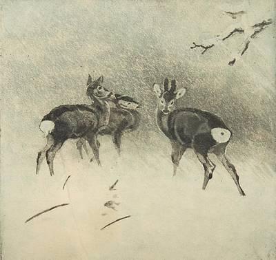 Three Deer In A Snowstorm Poster by Lolek