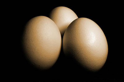 Three Eggs On Black Sepia Toned Poster by Donald  Erickson