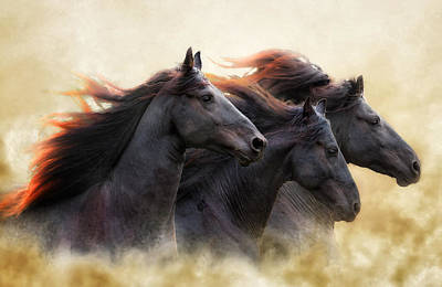 Three Horse Power Poster by Ron  McGinnis