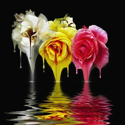 Tears Of Roses Poster by Gordon Engebretson