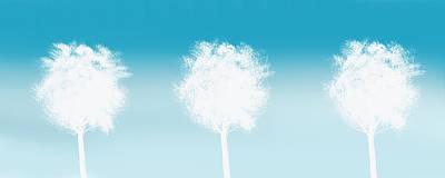 Three White Trees Poster