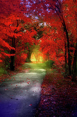 Through The Crimson Leaves To A Golden Beginning Poster