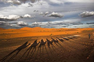 Through The Dunes Of Merzouga (morocco). Poster