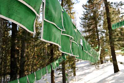 Tibetan Prayer Flags Poster by Jessica Rose