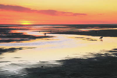 Tidal Flats At Sunset Poster by Roupen  Baker