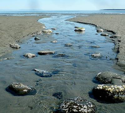 Poster featuring the photograph Tidal Pools by 'REA' Gallery