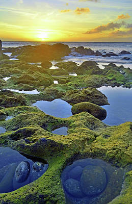 Poster featuring the photograph Tide Pools At Sunset by Tara Turner