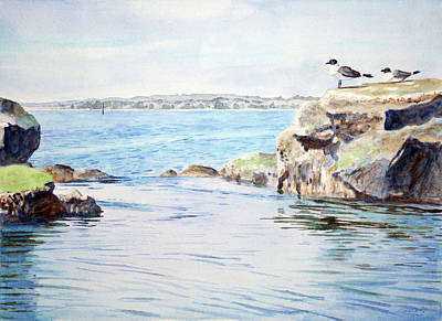 Tidepool With Terns Poster by Christopher Reid