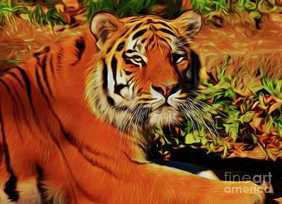 Tiger 22218 Poster