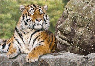 Tiger And Buddha Poster by Kathie Miller