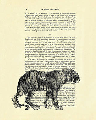 Tiger Black And White Illustration Poster