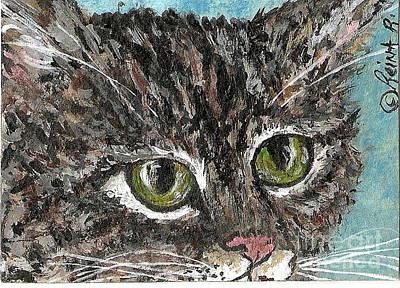 Tiger Cat Poster