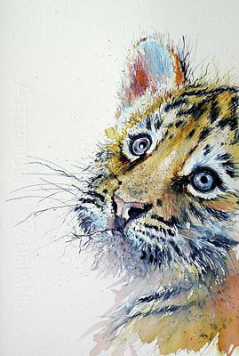Tiger Cub Poster by Kovacs Anna Brigitta