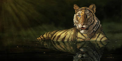 Tiger In The Water Poster by Kathie Miller