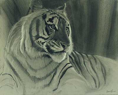 Poster featuring the digital art Tiger Light by Aaron Blaise