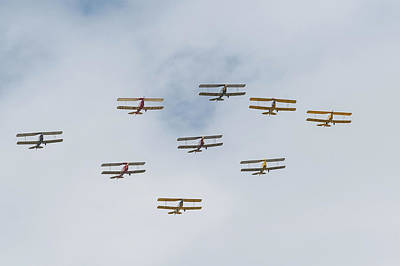 Poster featuring the photograph Tiger Moth Formation by Gary Eason