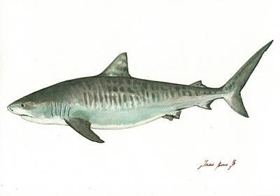 Tiger Shark,  Poster