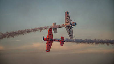 Tiger Yak 55 Poster by Dorothy Cunningham