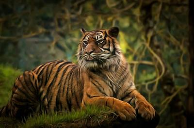 Poster featuring the photograph Tigers Beauty by Scott Carruthers