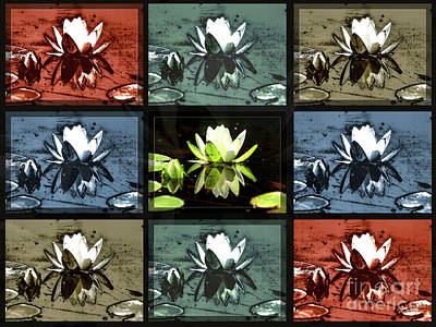 Tiled Water Lillies Poster