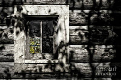 Poster featuring the photograph Timber Hand-crafted by Brad Allen Fine Art