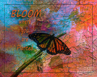 Time To Bloom By Beverly Guilliams Poster by Beverly Guilliams