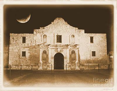 Timeless Alamo Poster by Carol Groenen
