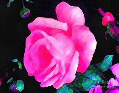 Tinged Pink Rose Poster by Catherine Lott
