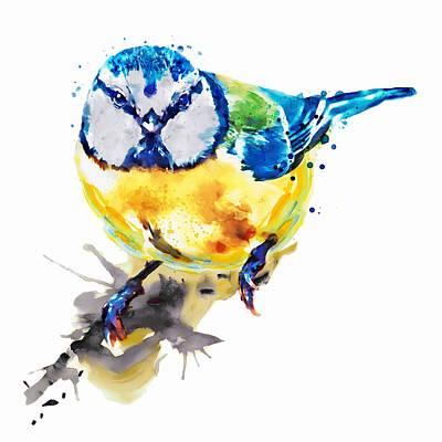 Tiny Colorful Bird Poster