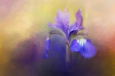 Tiny Iris Poster by Jai Johnson