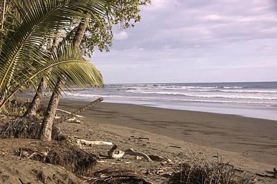 Tiskita Pacific Ocean Beach Poster