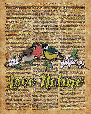 Tit,bullfinch And Sparrow On Branch Over Old Book Page  Poster