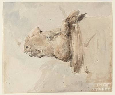 Title The Head Of A Rhinoceros Poster by MotionAge Designs