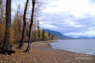 The Song Of October Poster by Victor K