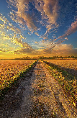 To Show Us The Way Poster by Phil Koch
