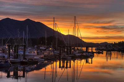 Tofino Docks Sunrise - A Tribute Poster by Mark Kiver