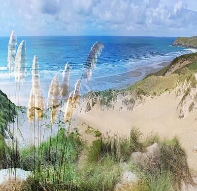 Toi Tois In Coastal  Sandhills Poster