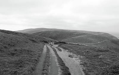 Tomales Trail Black And White Poster