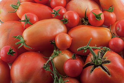 Poster featuring the photograph Tomato Mix by James BO Insogna