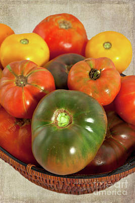Poster featuring the photograph Tomatoes In A Basket by Dan Carmichael