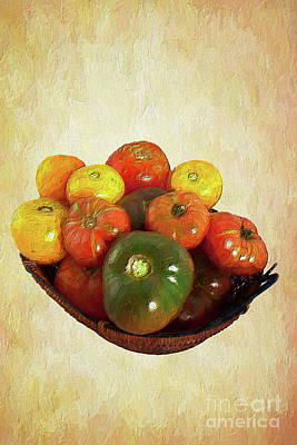 Poster featuring the painting Tomatoes In A Basket Wide Ap by Dan Carmichael