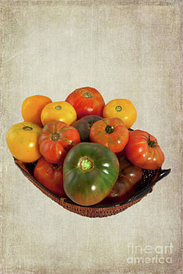 Poster featuring the photograph Tomatoes In A Basket Wide by Dan Carmichael
