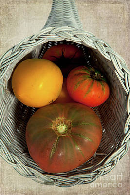 Poster featuring the photograph Tomatoes In A Horn Of Plenty Basket 2 by Dan Carmichael