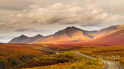 Tombstone Territorial Park Yukon Poster by Rod Jellison
