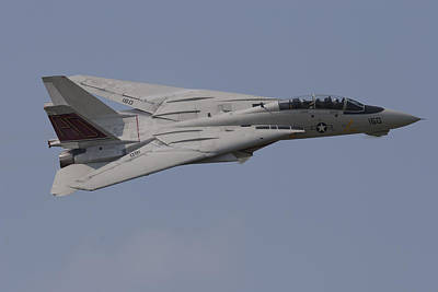 Tomcat Fly-by Poster