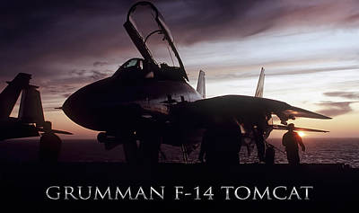 Tomcat Sunset Poster by Peter Chilelli