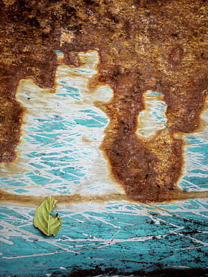 Torn Leaf On Rusted Metal Poster