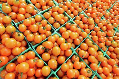 Totally Tomato Poster